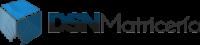 dsn logo.png