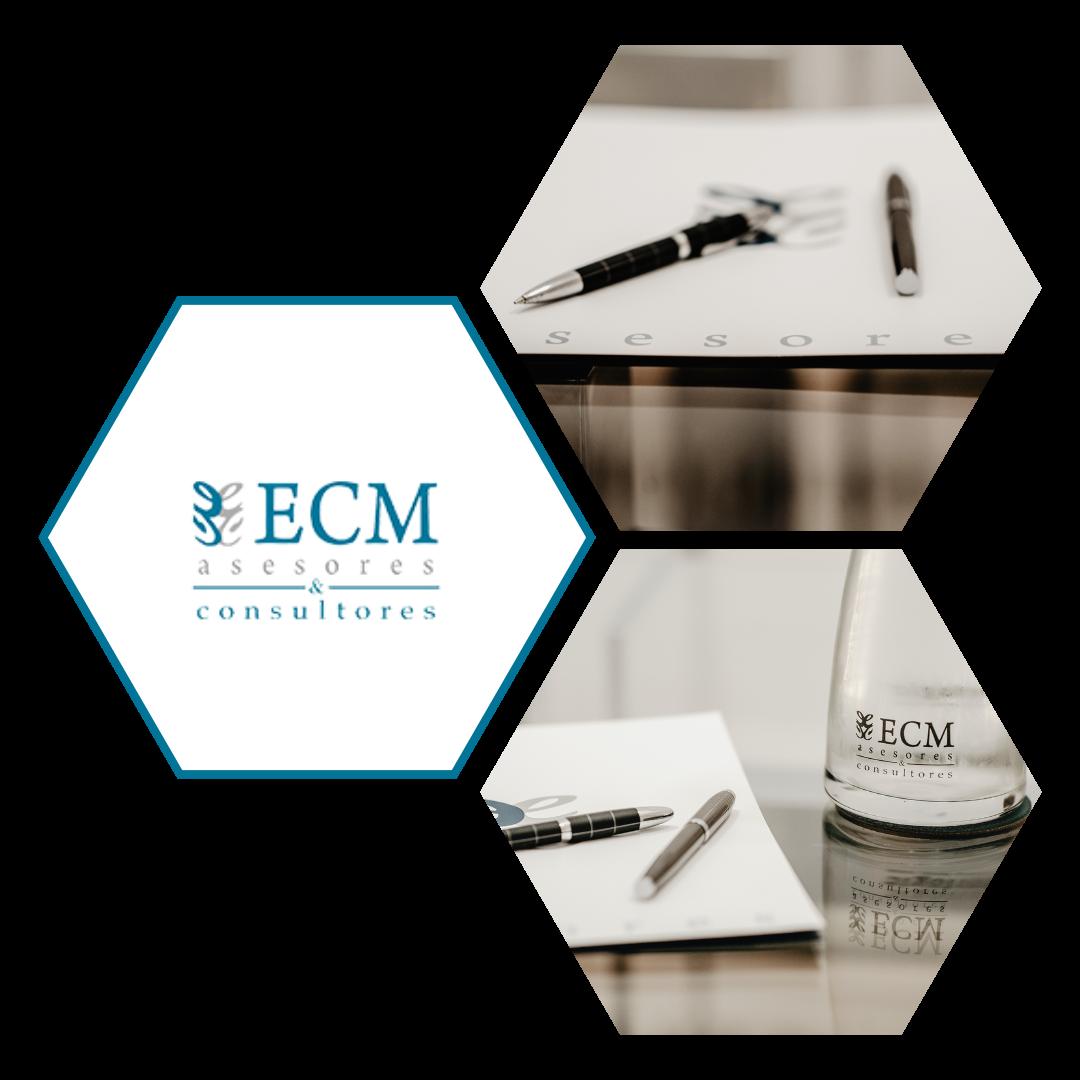 ECM Asesores y Consultores