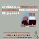ayudas promocion economica albacete